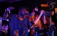 <h5>K.O.G &amp; The Zongo Brigade</h5>
