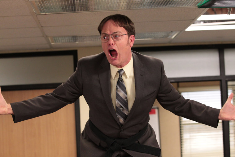 Dwight Shrute - Played by Rainn Wilson