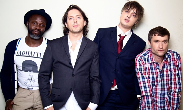The Libertines, CDs
